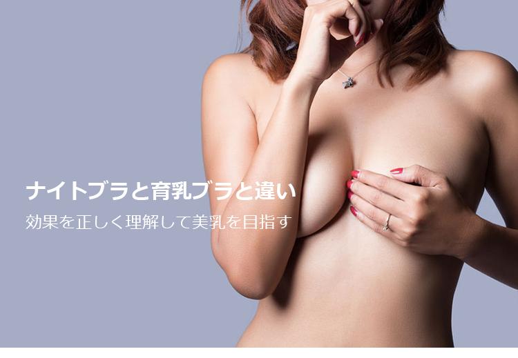 ナイトブラと育乳ブラと違い・トップ画像