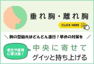 トップバナー(垂れ胸・離れ胸)