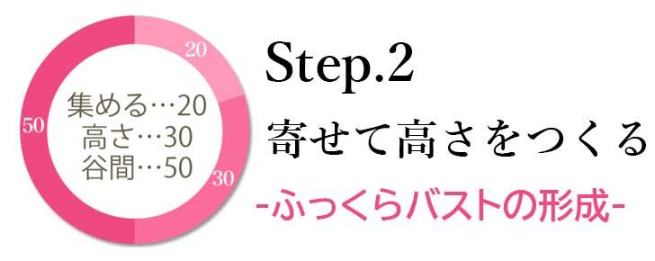 ブラデリスの育乳ブラ・Step2